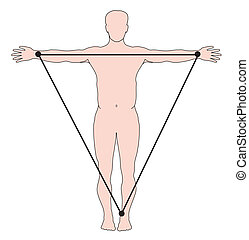 ECG limb leads - Position of ECG limb leads