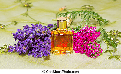 Essential oil with fresh flowers of lavander and red yarrow.