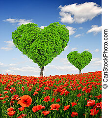 poppy field with heart tree - poppy field with tree from the...
