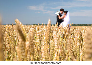wedding couple against blue sky among rye field symbolizing...