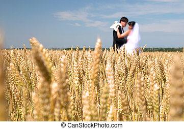 wedding couple against blue sky among rye field symbolizing...