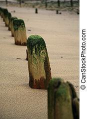 Breakwaters - well worn breakwaters on Sandsend beach near...