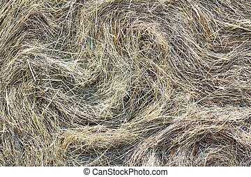 Haybale - Close detail of the straw in a haybale