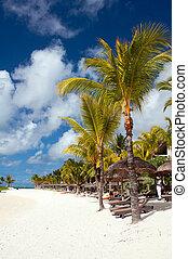 Tranquil tropical beach on Mauritius