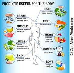 of products useful for the human body - illustration of...