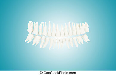 Human Teeth - 3d rendering of human teeth