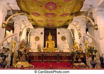 Buddha statue in temple interior - Buddha statue in temple...