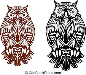Beautiful owl mascot - Beautiful owl isolated on white...