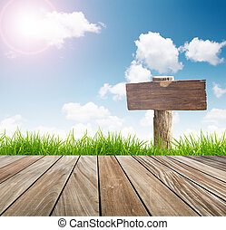 Wood sign ,fresh spring green grass with blue sky and wooden floor with sun light
