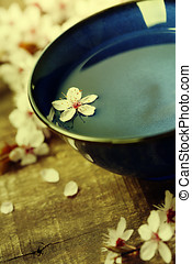 cherry blossom flowers with bowl of water on wooden...