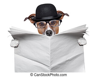 British dog reading a big blank newspaper