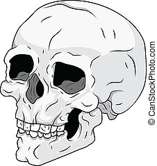 Skull Vector Stock Illustration - Drawing Art of Cartoon...