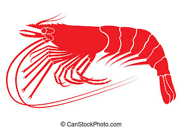 Shrimp - Red boiled shrimp in vector format
