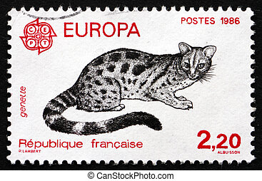 Postage stamp France 1986 Civet Cat, Viverridae - FRANCE -...