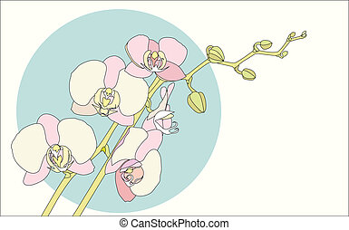 branch orchid