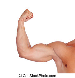 Strong biceps isolated on a white background
