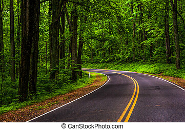 Curve along Skyline Drive in Shenandoah National Park,...