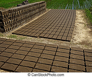 Mud Bricks - Mud bricks lined up to dry under the sun in...