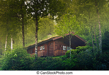 House in the Norway forest