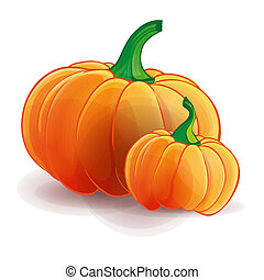 Two pumpkins isolated. Big and small