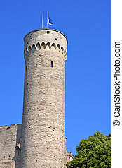 Toompea tower in summer day. Tallinn, Estonia.