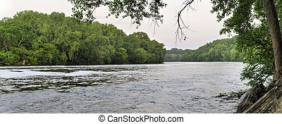 Mississippi River - Dense green vegetation along the...