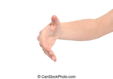 Front view of a woman hand ready to handshake
