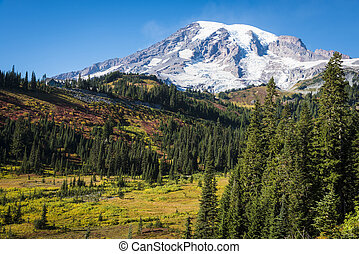 Mount Rainier in autumn - Mount Rainier National Park in...