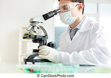 Lab intern - Image of a young intern analyzing specimens in...