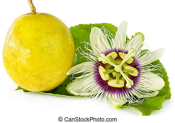 Passion fruit flower with ripe passion fruit isolated on...