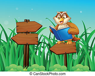 An owl reading a book above a wooden arrow board