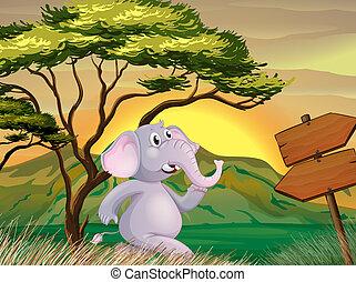 An elephant following the arrow signboards