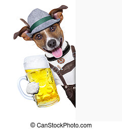 oktoberfest dog with a beer mug ,smiling happy behing a...