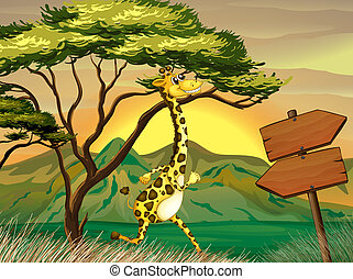 A giraffe following the wooden arrow guide - Illustration of...