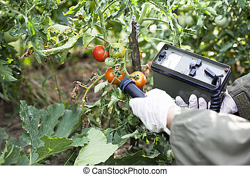 measuring radiation - Measuring radiation levels of tomato