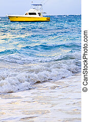 Waves breaking on tropical shore - Waves breaking on...