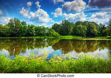 Lake in a summer forest. Sunny day, blue sky.