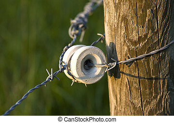Country Fence - A part of a electric barbed wire fence...