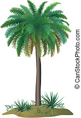 Palm tree and plants - Tropical palm tree with green leaves...
