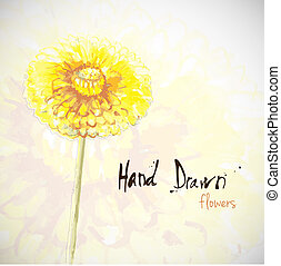 Flowers - Hand drawn vector illustration of flowers with...
