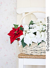 Christmas flowers with basket on the chair