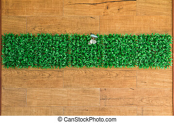 wall grass interior background naturaly - a photo of wall...