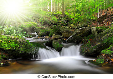 Waterfall on the White creek - National park Sumava Czech...