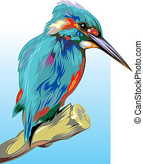 kingfisher - nice illustrated kingfisher on the blue and...
