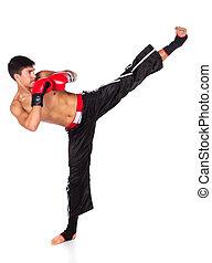 joven, macho, kickboxer