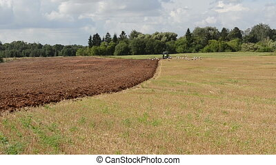 tractor plow field stork - tractor plow agriculture field in...