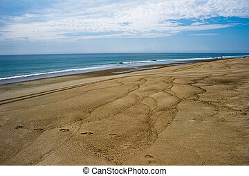 Sand Patterns on a Cape Cod Beach - Patterns mark the sand...