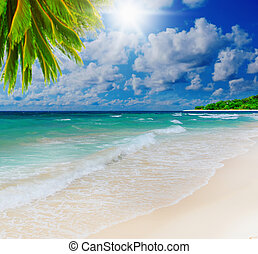 Sunny tropical beach on the island - Beautiful sunny...