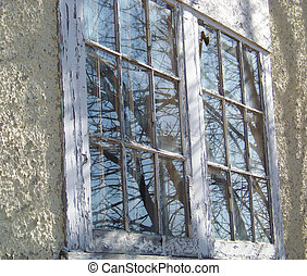 Rustic window panes on an abandoned building reflect bare...