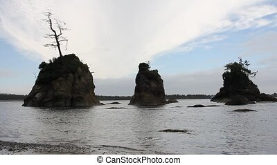 Seastack Rocks in Garibaldi Oregon - Pig and Sow Inlet with...